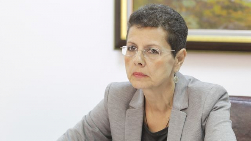Adina Florea a renuntat la candidatura pentru sefia Sectiei Speciale